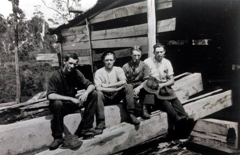 sassafras-sawmill-top-rixons-pass-woonona-1919